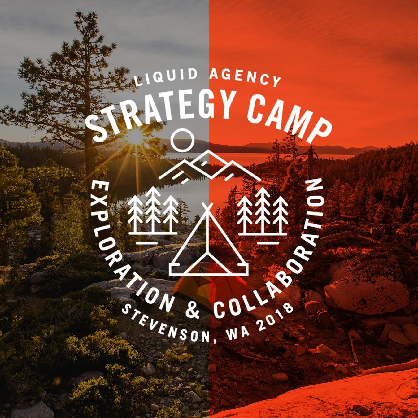 liquid agency strategy camp